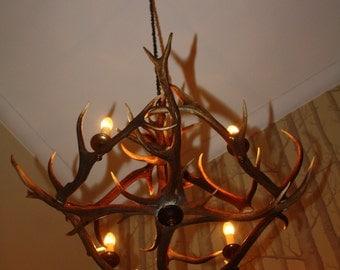 ANTLER CHANDELIER LIGHTING from Scottish red deer