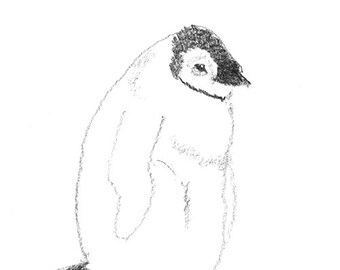 penguin chicks in pencil, birds for children, black and white print, set of postcards