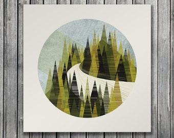 Pine - Fall