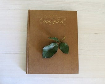 Vintage Book // First Edition // 1920's // Odd Fish