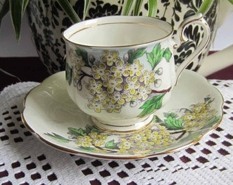 Royal Albert Flower of the Month HAWTHORN Bone China Tea Cup and Saucer