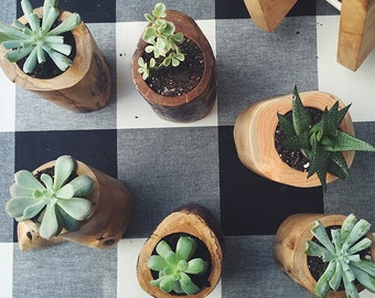 Wooden Planters - Salvaged Wood