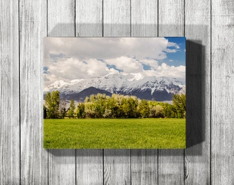 Gallery Wrap Canvas, Canvas Art, Canvas Print, Large Canvas Art, Office Wall Art, Landscape Photography, Greenery, Spring Decor, Spring Art