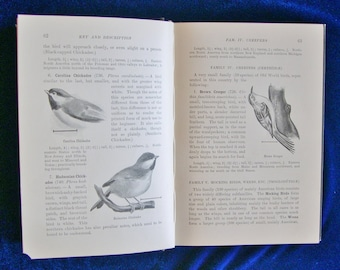 1898 Apgar's Birds of the United States First Edition, Pub. American Book Co. Fabulous Bird Watcher's Gift!