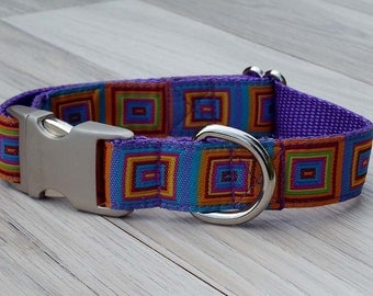 Designer Dog Collar - Groovy
