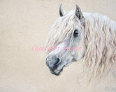 WHITE HORSE PORTRAIT, Original pastel drawing, Large size, White creamy, Horse art, Catalogue of the exhibition