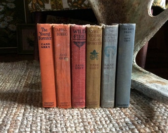 Vintage Western Zane Grey Book Lot | Colorful Book Stack | Vintage Western Book Collection
