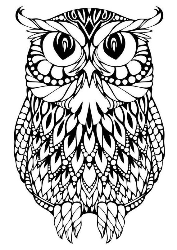 Owl svg for Selling coloring pages on etsy