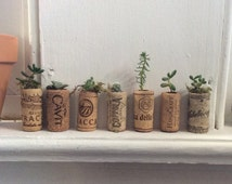 Wine Cork Succulent Planter- Wedding favors