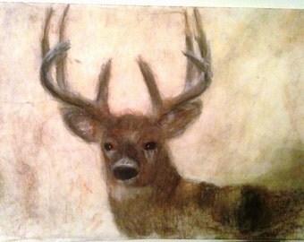 Perceptive Buck