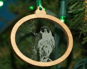 Bird Christmas Ornament, Falcon home decor, Peregrin Falcon, Bird hanger, Bird Holiday decoration, Bird stocking stuffer, Bird holiday gift