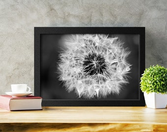Printable Wall Art, Dandelion Photograph, Black and White Photography, Flower Print, Home Decor, Instant Download