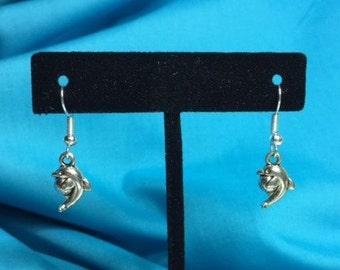 Dolphin Earrings!