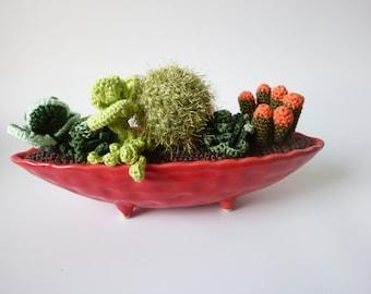 amigurumi cactus and crochet succulent