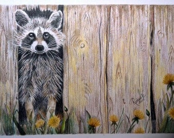 Raccoon In The Barn Original Colored Pencil Art