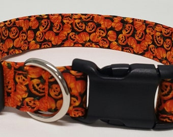 dog collar, mini pumpkin patch, halloween dog collar, halloween collar, fall dog collar, fall collar, pumpkin dog collar, pumpkin collar