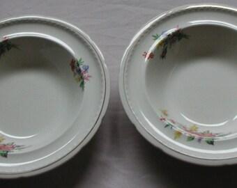 Vintage Swinnertons Majestic Vellum Bowl Set of Two