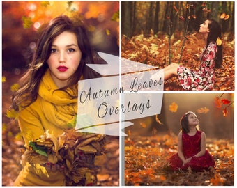 BOGOF, 20 Autumn Leaves Photoshop Overlays, Fall Overlays, Maple Leaf, Falling Leaves, Photoshop Overlays, Photo Overlays, Marketing Board