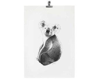 Koby the Koala #2 Print