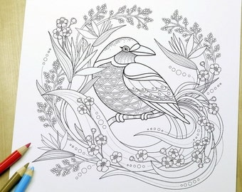 Graceful Bird - Adult Coloring Page Print