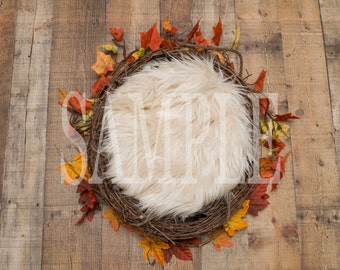 Digital Backdrop/prop newborn - Fall leaf nest/wreath