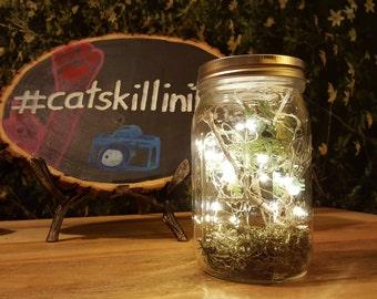 Whimsical Firefly Mason Jar
