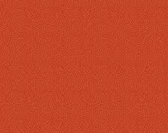 Riley Blake Designs On Our Way Red by The RBD Designers C4125