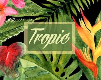 Watercolor Tropic Leaves&Flowers Clip Art