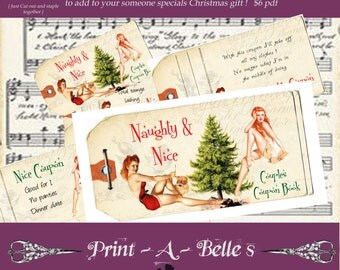 Couples naughty and nice Christmas coupon book