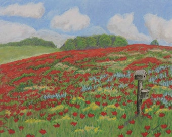 Poppy Field Original Art Landscape Pastel Painting