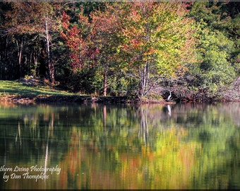 Lake, Reflection, Autumn Colors. Trees, Landscape Photography