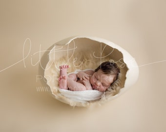 Little Pose ~ Egg Side Neutral Newborn Digital Background High Res jpg file