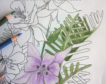 Instant Download, Coloring Page, Columbine Flower Coloring Page, Adult Coloring Page, Flower Coloring Page, Coloring, Relaxation, DIY Color