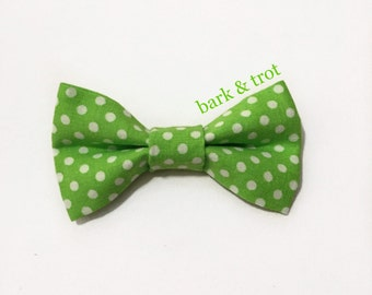 Lime Green Polka Dot Collar Bow for Dogs