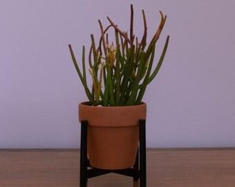 The Mini Naramata - Mid Century Modern Table Top Succulent/Cactus Stand