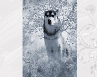 "Post card greeting card ""Alaskan Malamute"" dog - [# GK. 2012.032]"