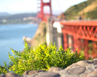 San Francisco Golden Gate Bridge Print