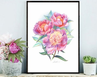 Pink Peony bouquet. Watercolor Art Print 7,8x11,8