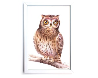 Curious Owl. Watercolor Art Print 7,8x11,8