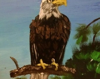 Original painting - bald eagle 8 x 10
