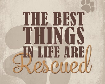 The Best Things in Life are Rescued