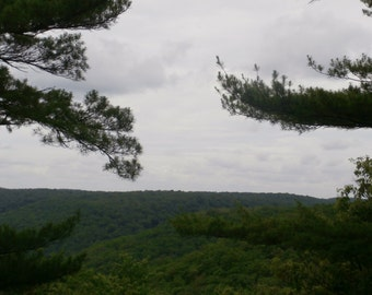scenic view photo, clouds photo, sky photo, trees photo, landscape photo