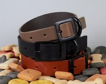 Tan Leather Dog Collar with Black Metal Trim (M, L, XL)