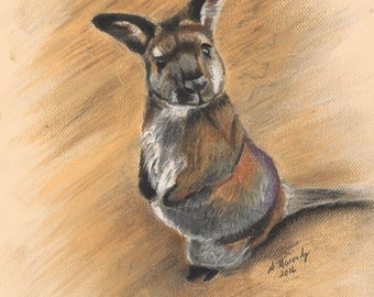 Wallaby Illustration Print