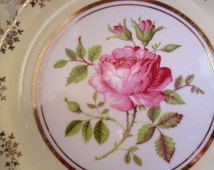 Vintage Arklow China Plate