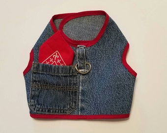 Blue jeans red hankie side pockets harness