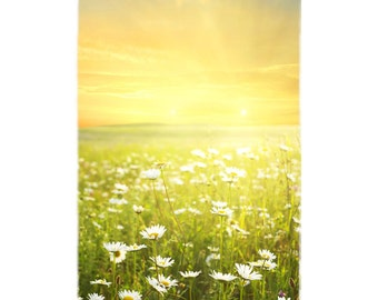 Field of Daisies Beach Towel