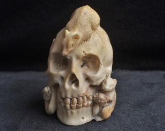 Carved skull of stag Horn