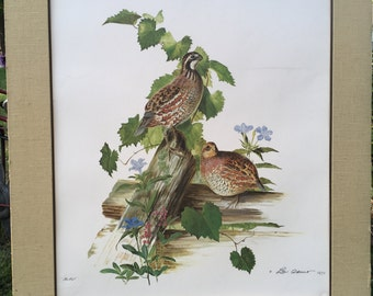 Lee Adams, Quails in nature, signed with Seal 1971 Limited Ed No. 49, Matted, VERY Rare, Vintage