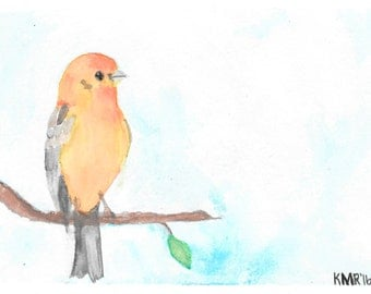 Animal Water Color Greeting Cards